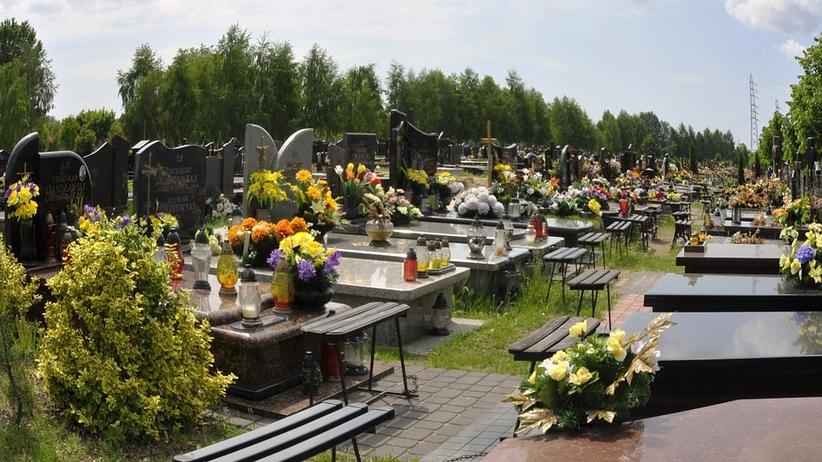 Ile będą kosztować kwiaty na Wszystkich Świętych?
