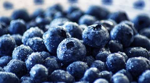 GIS wycofał ze sprzedaży mrożone jagody z Biedronki