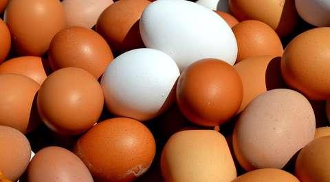 Rośnie cena jajek. Tak źle nie było od lat!