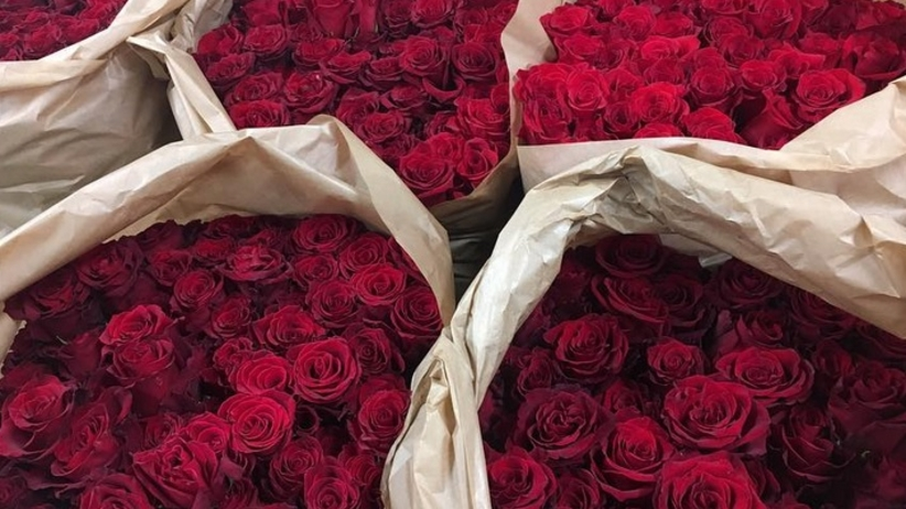 koszt dobierania róż darmowy serwis randkowy jak pof
