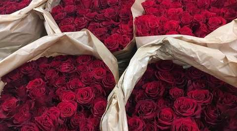 Kwiaciarnie oferują wynajęcie bukietu róż na 10 minut. Instagramerki są zachwycone
