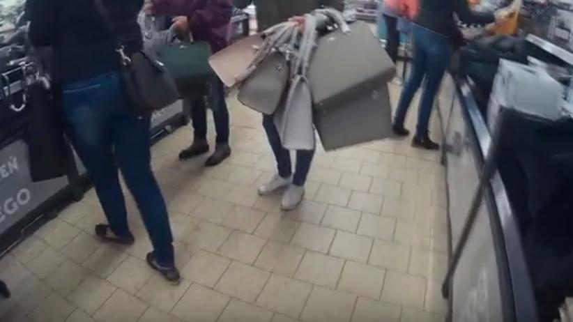 Oszaleli! W Lidlu znów trwa walka o torebki! [FILM]