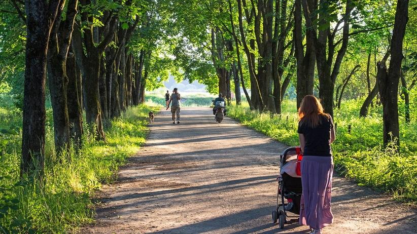 """Matka z wózkiem wyproszona ze sklepu. Właściciel """"obarczony"""" karą 20 zł"""