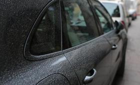 Żółty pył na samochodach 2018