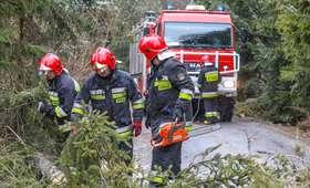Ponad 100 zerwanych dachów, tysiące powalonych drzew. 1128 interwencji straży pożarnej