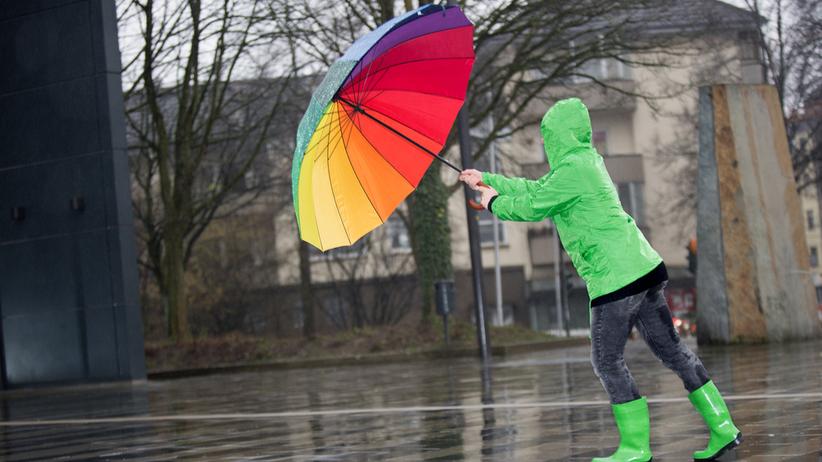 Alert IMGW. Ostrzeżenia dla 14 województw z powodu silnego wiatru