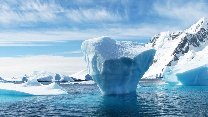 Na Antarktydzie odnaleziono... 100-letni kawałek ciasta [FOTO]