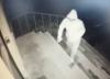 Atak na biuro poselskie PiS. Poseł publikuje nagranie [WIDEO]
