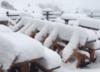 Śnieg zaatakował w sierpniu. Spadło aż 40 centymetrów białego puchu