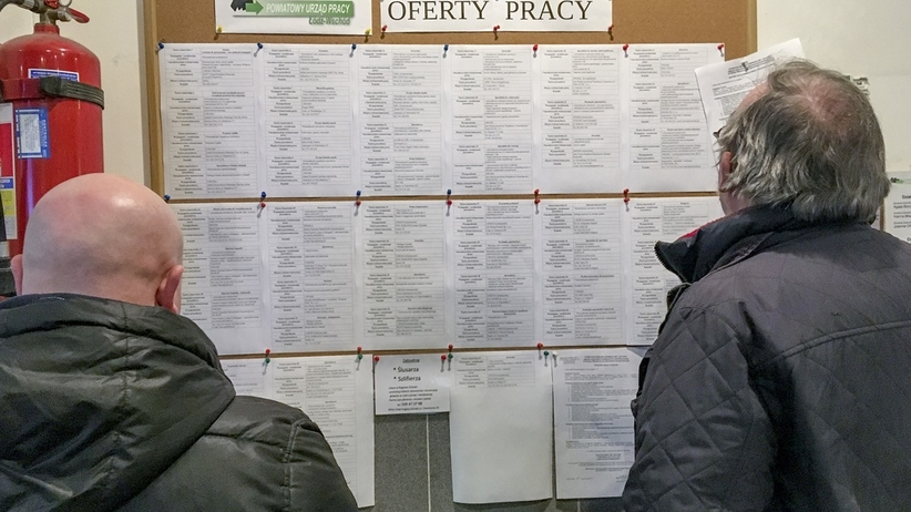 bezrobotni oferty pracy