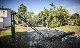 Bilans nawałnic: prawie 100 tys. osób bez prądu, połamane drzewa, ofiary śmiertelne [FOTO]
