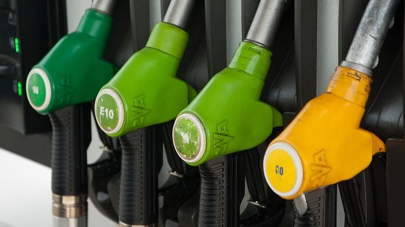 Ceny paliw. Ile zapłacimy na stacjach benzynowych na koniec wakacji?