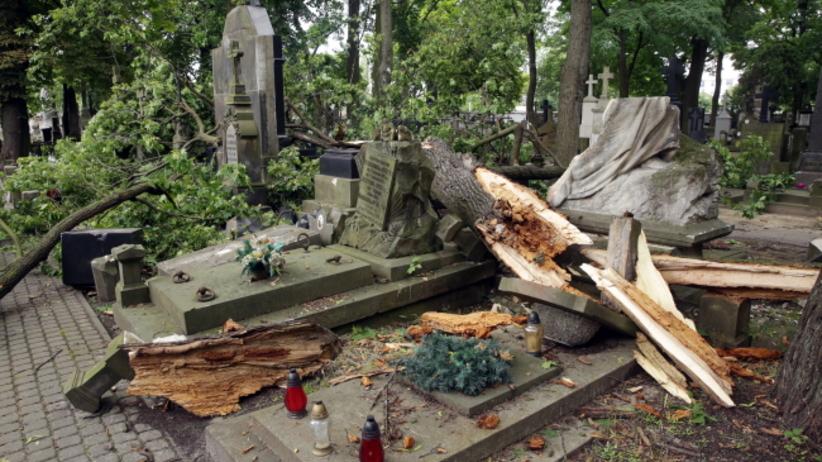 Potężna wichura zniszczyła Cmentarz Powązkowski