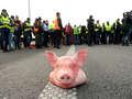 Pierwsza dymisja po protestach rolników. Ardanowski odwołuje Jażdżewskiego