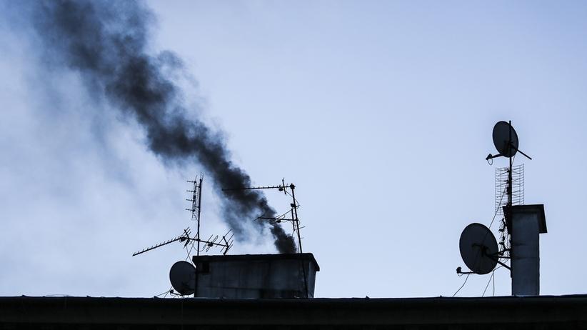 Sukces gdańskich strażników miejskich. Nowatorska metoda pomoże walczyć ze smogiem