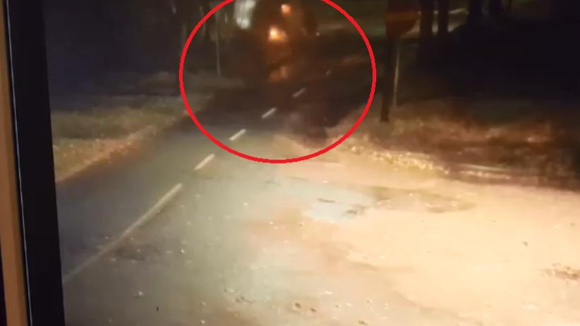Pijany kierowca wjechał w przystanek. Trzeźwa była tylko 18-latka [WIDEO]
