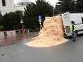 Furgonetka Greenpeace wysypuje trociny przed sejmem