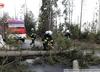 Halny w Tatrach. Powalone drzewa na jezdniach i budynkach