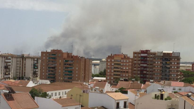 MSZ wydało komunikat ws. ewakuowanych Polaków w Hiszpanii