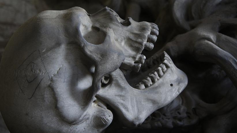 Niemcy handlowali szczątkami Polaków. Teraz służą jako... pomoc naukowa!