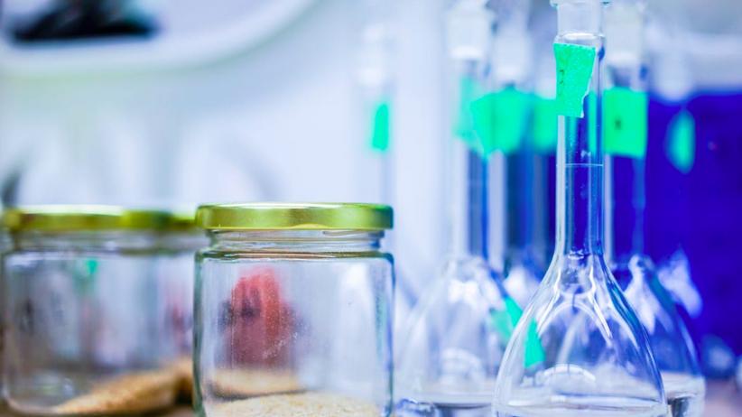 Genetycy z Uniwersytetu Śląskiego uzyskali jęczmień odporny na suszę