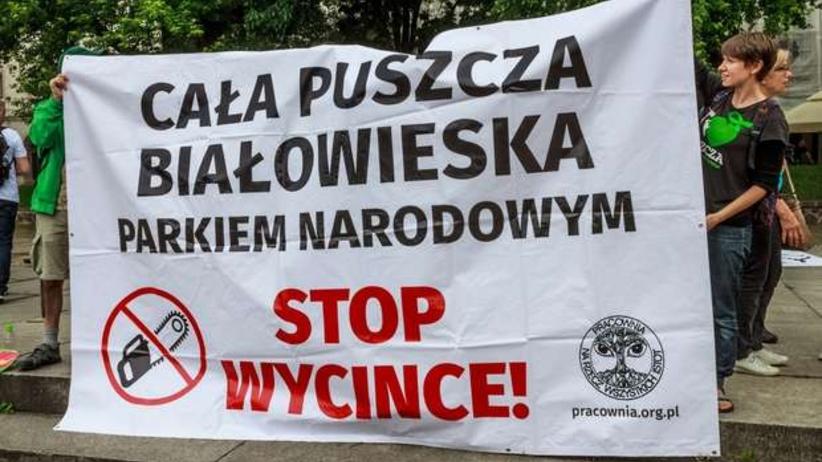 Piuszcza Białowieska