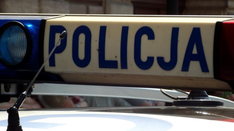 KGP: polskie i niemieckie służby przeprowadziły akcję przeciwko pedofilom