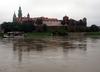 Z Wisły w Krakowie wyłowiono zwłoki mężczyzny. Mogły spędzić w wodzie kilka tygodni