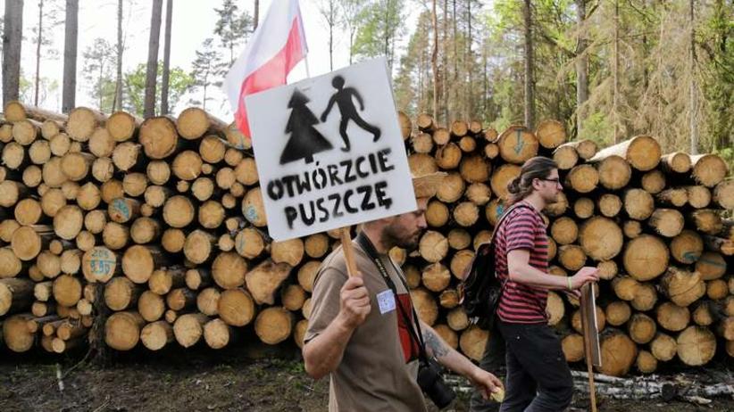 Ksiądz twierdzi, że napadli go ekolodzy w Puszczy Białowieskiej.