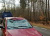 Śmiertelny wypadek. Jeleń wybiegł przed samochód 46-latki