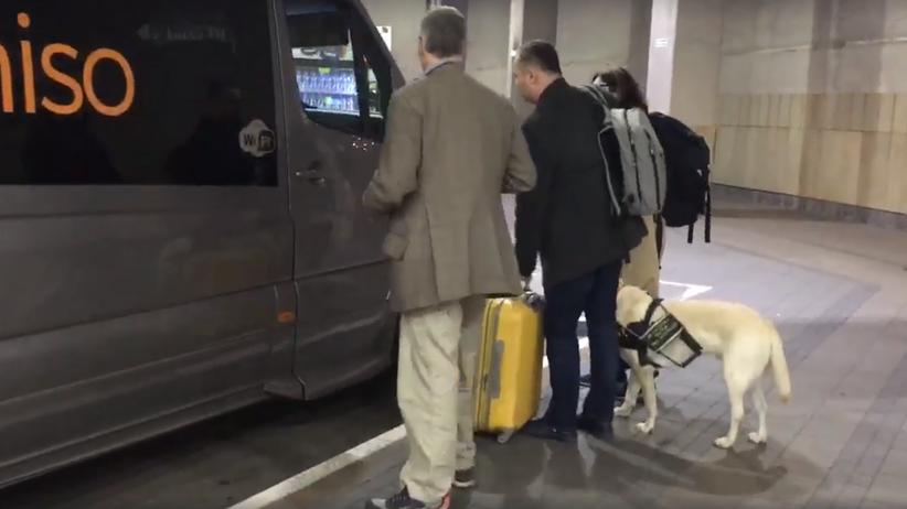 Małopolska. Kierowca odmówił zabrania do busa niewidomej z psem przewodnikiem