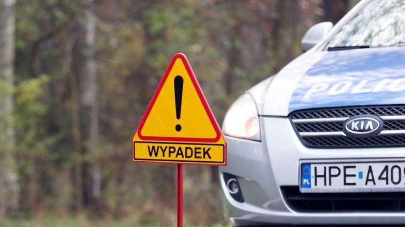 Wypadek na DK 79. Autokar z dziećmi wpadł do rowu