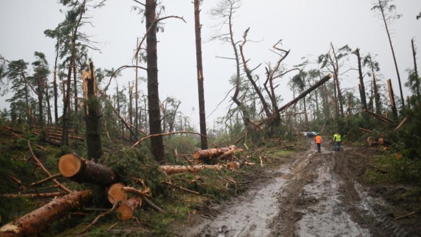 Ministerstwo oszacowało straty po nawałnicach. 13 tys. odbiorców wciąż bez prądu