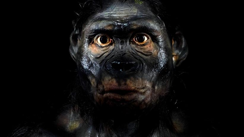 Pracownia neandertalczyków odkryta na Śląsku. Ma 60 tysięcy lat