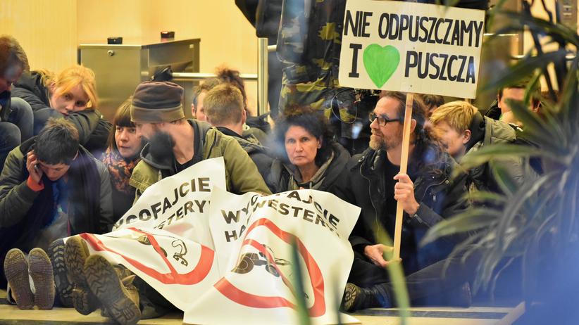 Obóz dla Puszczy w Warszawie. Aktywiści protestują w siedzibie Lasów Państwowych