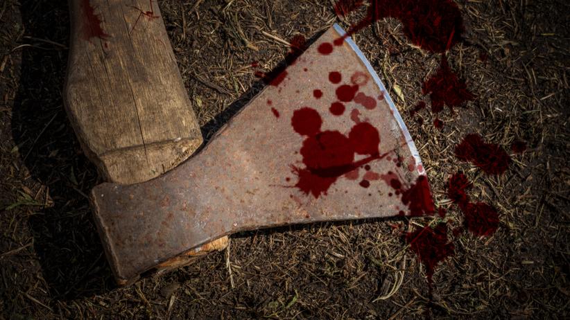 Brutalnie zabili psa. Chcą dobrowolnie poddać się karze