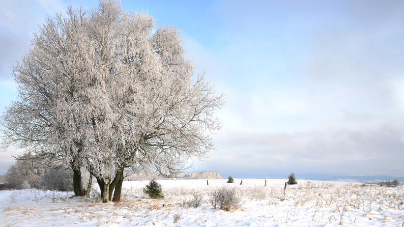 Ostrzeżenia IMGW przed opadami śniegu dla czterech województw