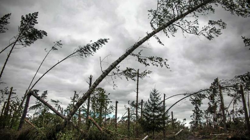 Ostrzeżenia meteorologiczne dla 11 województw. Będzie mocno wiało
