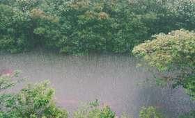 Ostrzeżenia meteorologiczne dla siedmiu województw. Będą obfite burze