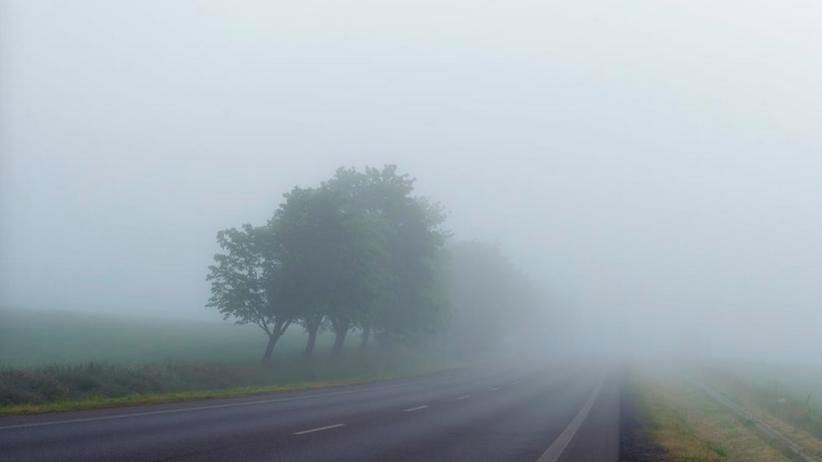 RCB ostrzega kierowców: W 5 województwach ulewy i mgły