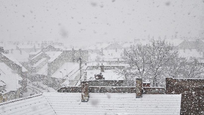 Atak zimy w Polsce. Śniegowy ALERT dla 8 województw [MAPA]
