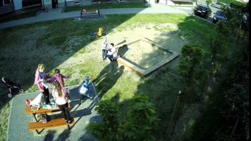Pies zaatakował dzieci na placu zabaw. Szarpał, gryzł i nie chciał puścić [WIDEO]