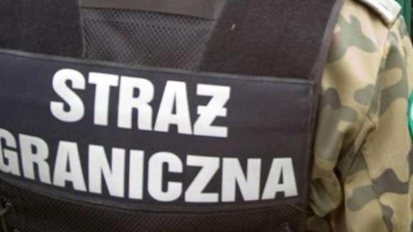Nielegalni imigranci z Afryki chcieli przedostać się do Polski. Zatrzymano ich przy granicy