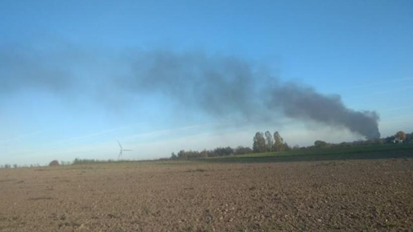 Podlaskie. Pożar budynków z trzodą chlewną. Spłonęło kilka tysięcy świń
