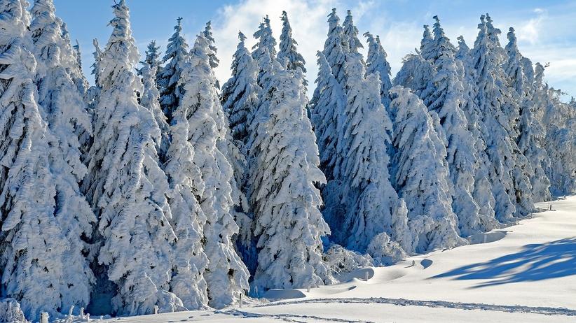 Blisko pół metra śniegu. IMGW ostrzega przed intensywnymi opadami