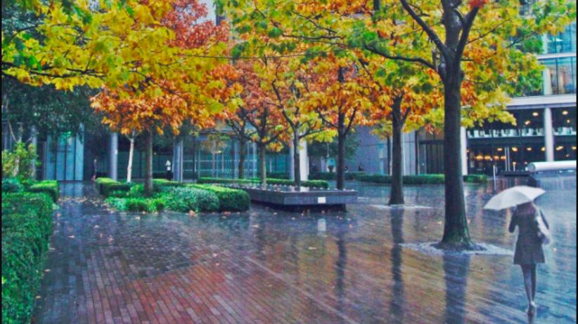 Jesień nie odpuszcza. Będzie padać!