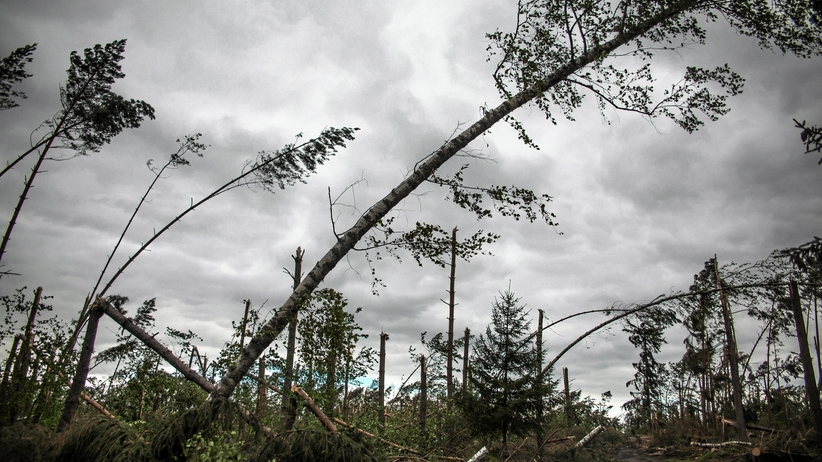 Pogoda: Setki interwencji strażaków. Możliwe wichury i burze. Orkan z Niemiec nad Polską