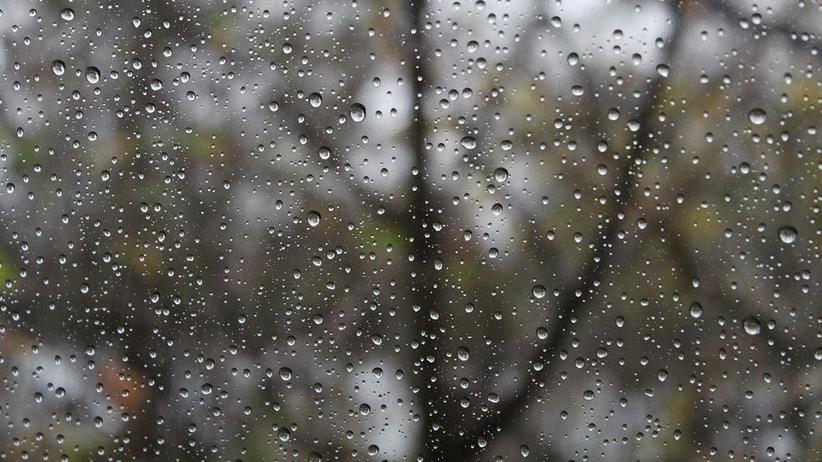 Pogoda na poniedziałek: ślisko na drogach, deszczowy początek wiosny