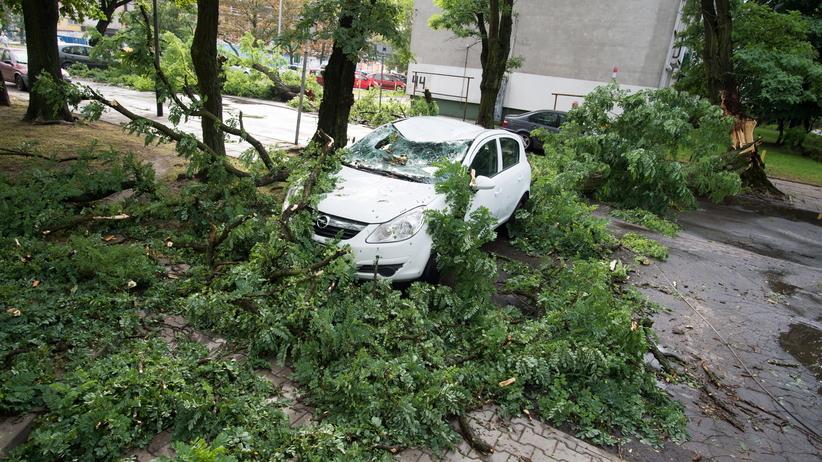 Nad Polskę nadciąga kolejny orkan! Ostrzeżenie przed silnym wiatrem