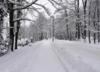 Nawet 20 stopni mrozu i opady śniegu. Nadchodzi gwałtowna zmiana pogody